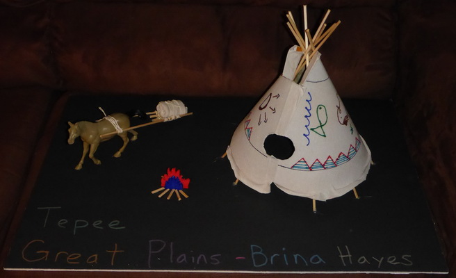 Native american home school project